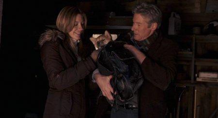Фильм Хатико: Самый верный друг | Hachiko: A Dogs Story (2009)