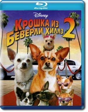 Фильм  Крошка из Беверли-Хиллз 2 / Beverly Hills Chihuahua 2