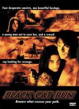 Фильм Бег чёрной кошки