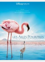 Фильм Пурпурные крылья: Тайна фламинго