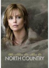 Фильм Северная страна