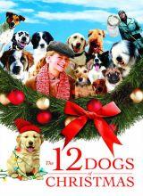 Фильм 12 рождественских собак