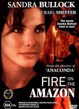 Фильм Амазонка в огне