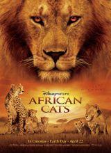 Фильм Африканские кошки: Королевство смелости