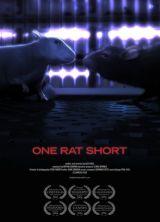 Фильм История одной крысы