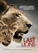 Фильм Последние львы