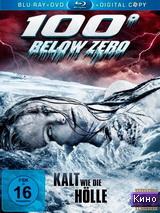 Фильм 100 градусов ниже нуля (2013)