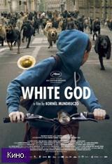 Фильм Белый Бог (2014)  скачать в HD качестве
